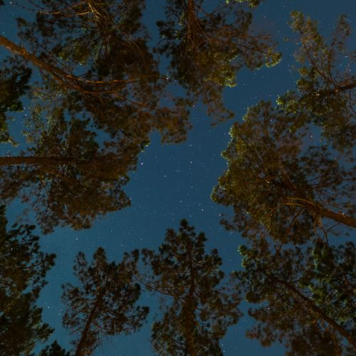 The skies were so clear and bright in Northern Portugal that is was difficult to tear myself away each night.